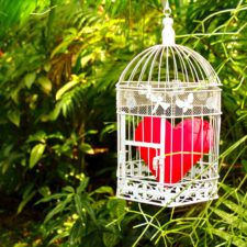 Guard your heart | Textile red heart in a metal cage hanging on tropical forest